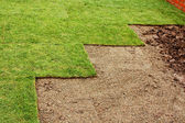 Laying turf — Stock Photo