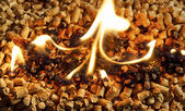 Burning Wood chip biomass fuel a renewable alternative source of — Stock Photo