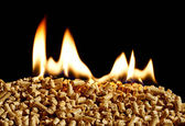 Burning Wood chip biomass fuel a renewable alternative source of — Stok fotoğraf