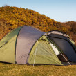 Dome tent pitched in field — Stock Photo
