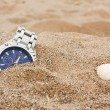 Постер, плакат: Lost wrist watch at the beach