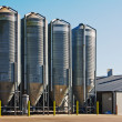 Grain storage silos — Stock Photo #24718907