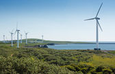 Coastal wind farm — 图库照片