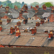 Suburban rooftops common urban scene — Stock Photo #26884485