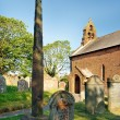 Gosforth ancient Viking Cross — Stock Photo