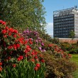 Stock Photo: Carlisle Civic Centre