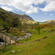 Stock Photo: Iconic Rannerdale valley in Spring