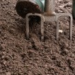 Stock Photo: Digging Garden
