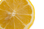 Lemon slice — Stock Photo