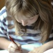 Girl writes homework — Stock Photo #13167431