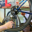 Stock Photo: Bicycle repair