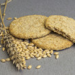 Biscuit of whole grain wheat — Stock Photo #27582083
