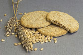 Biscuit of whole grain wheat — Stock Photo