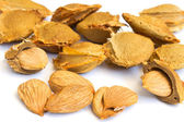 Seeds and apricot kernel — Stock Photo