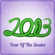 New Year card with a green snake — Stock Vector