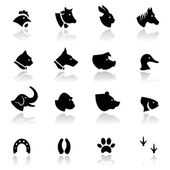 Icons set Animals — Stock Vector