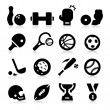 Sports Equipment Icons — Vector de stock #24539889