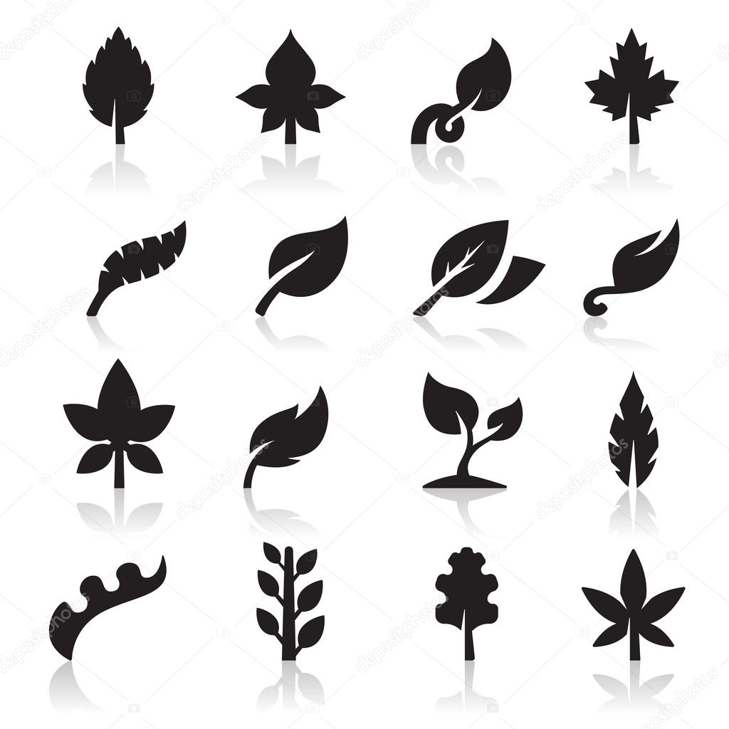 Leaf Icon Leaf Icon Vector by Tantoon