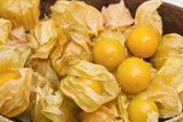 Cape gooseberry (Physalis),healthy fruit and vegetable — Stock Photo