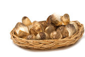 Mushroom in the basket — Stock Photo