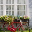 red bicycle in front of retro white window and flower pot — Stock Photo
