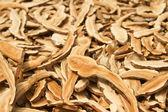 Dried Lingzhi mushroom ,traditional chinese medicine. — Stock Photo