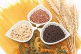 Massas e arroz, grupo de produtos de hidrato de carbono — Foto Stock