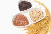 Rice varieties,wheat,brown rice,black jasmin rice in white cera — Stock Photo