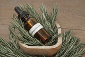 Rosemary herb and aromatherapy essential oil dropper bottle — Stock Photo