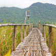 Bamboo path in the nature park — Stock Photo
