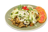 Crispy catfish salad with green mango salad — Stock Photo