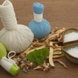 Stock Photo: Herbal compress ball for sparomtreatment