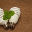 Stock Photo: Compact Fluorescent Light Bulb,green concept innovation energy-s