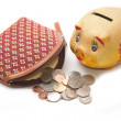 Moneybag and piggy bank ,Money accumulation concept — Stock Photo