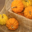 Small pumpkin in crate,healthy vegetable — Foto de Stock