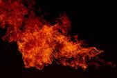 Fire explosion , Blaze Fire flames background — Stock Photo
