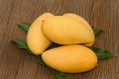 Golden mango — Stock Photo