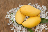 Fresh golden mango — Stock Photo