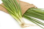 Green Onion on white background — Stock Photo
