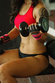 Torso of a young fit woman lifting dumbbells — Stock fotografie