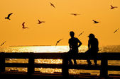 Silhouette of couple with birds on bridge in sunset — Stock Photo