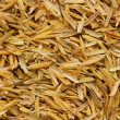 Stock Photo: Rice husk,cultivating materials