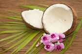 Coconut essentail oil for alternative therapy and beauty spa — Stockfoto