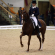 Stock Photo: Dressage world cup