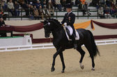 Dressage world cup — Stock Photo