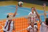Kaposvar - bse volleybal oyunu — Stok fotoğraf