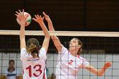 Kaposvar - juego de voleibol de la eeb — Foto de Stock