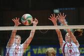 Kaposvar - ujpest voleybol oyunu — Stok fotoğraf