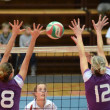 Kaposvar - Ujpest volleyball game - Stock Photo