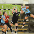 Siofok - Fehervar handball match - Stock Photo